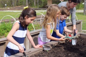 two girls and one boy digging and planting seeds in the garden